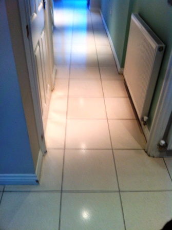 Limestone Floor After Clean and Repolish with Colour Grow